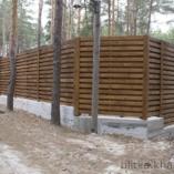 Забор в сосновом бору