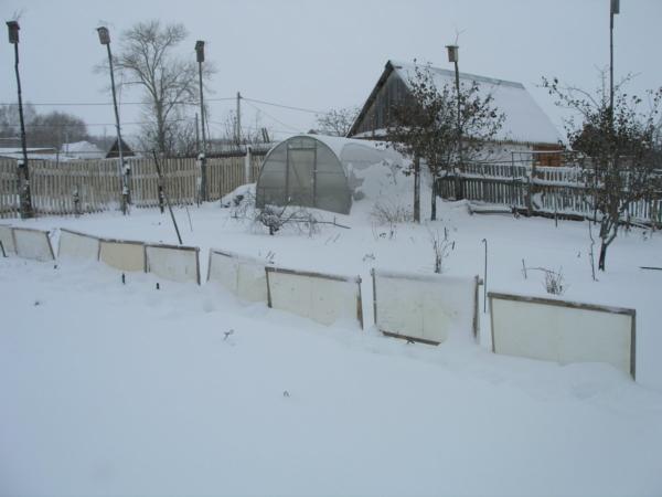 Промерзание земли в закрытой теплице