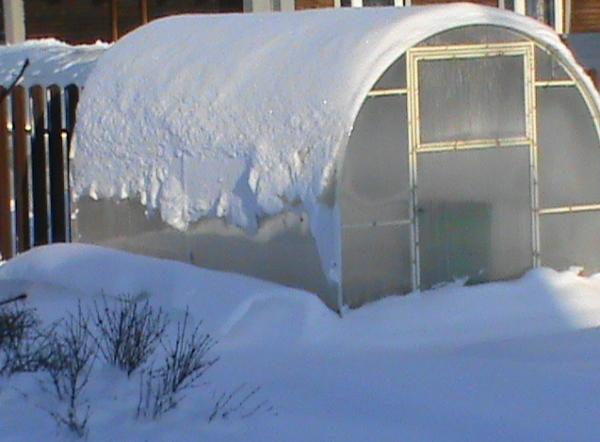 Снег на теплице из поликарбоната