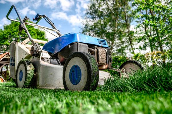 Скашивание травы газонокосилкой