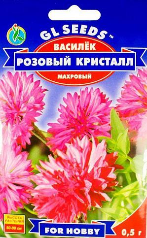 Василек «Розовый кристалл»